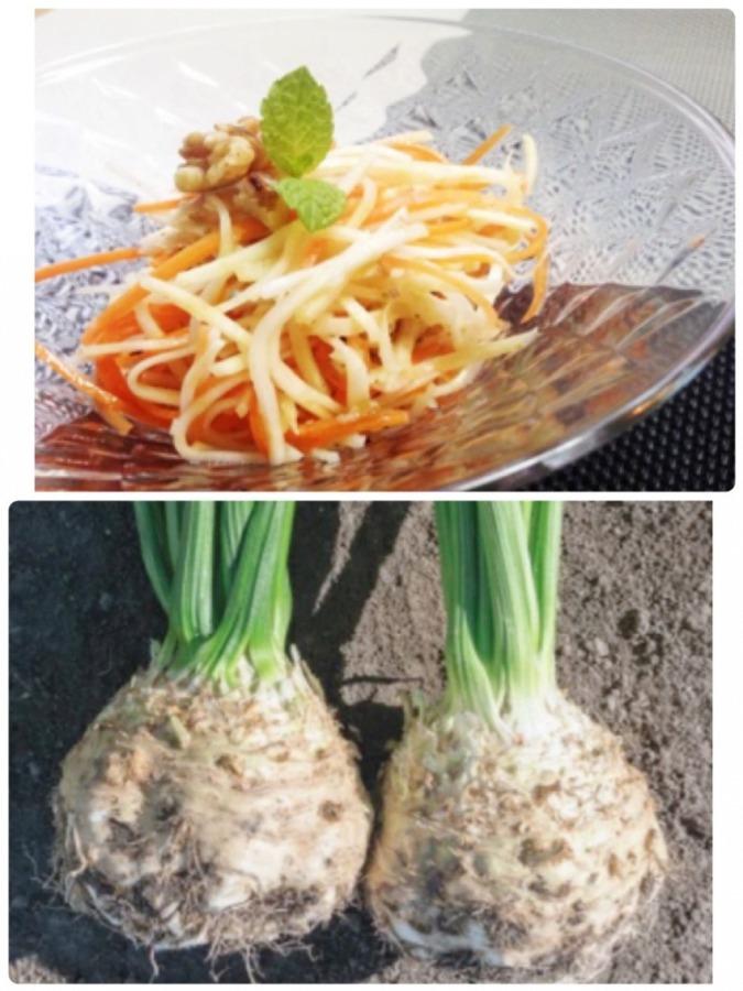 セロリアック Celeriac